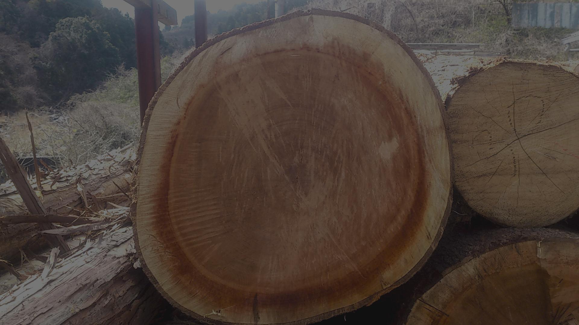 お客様の要求全てに柔軟に対応する材木店